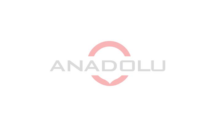 Anadolu Döküm Sanayi A.Ş. 'nin Yeni Web sitesi yayında .